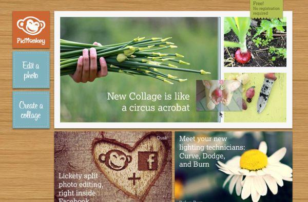 collage-foto-pickmonkey