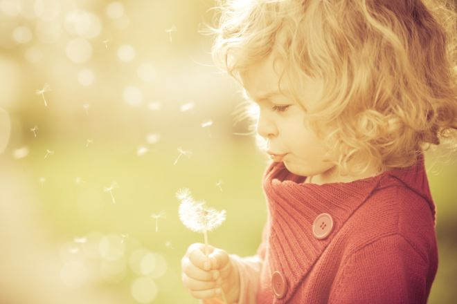 Beautiful child blowing away dandelion flower in spring